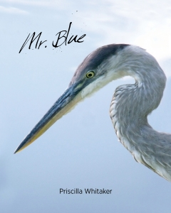 Mr. Blue Front Cover